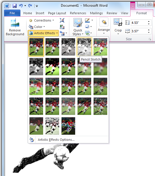 Artistic Effects on an Image - Office 2010